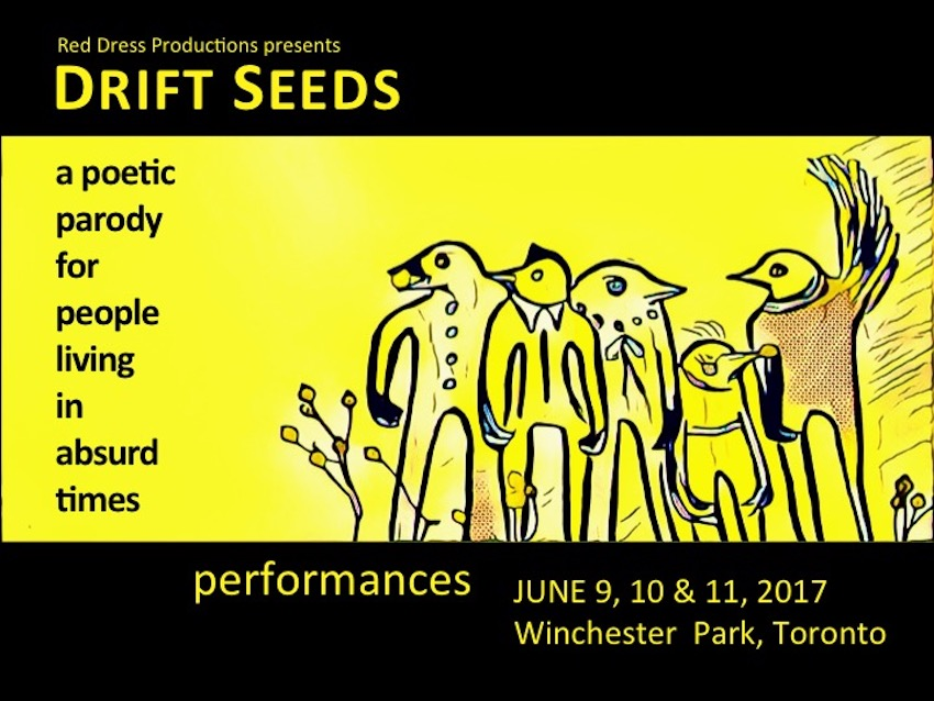 "This image shows the front of a promotional postcard. The text reads ""Drift Seeds: A poetic parody for people living in absurd times"" and lists perfromances on June 9, 10 and 11 2017 in Winchester Park, Toronto. There is an illustration of 4 bird-like creatures on a yellow background."