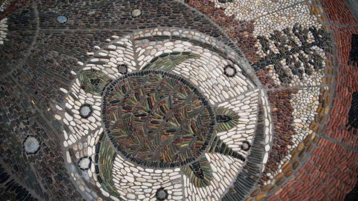 A detail of an in-ground pebble mosaic showing the image of a turtle