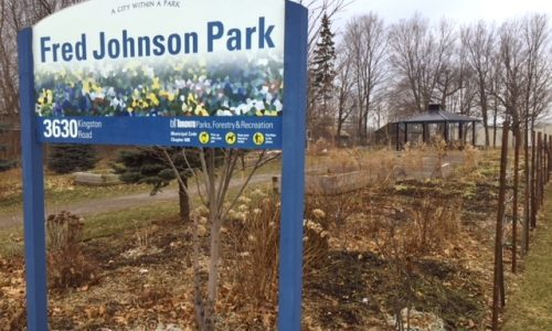 "The image is of a park in winter. In the foreground, a signs reads ""Fred Johnson Park""; the sky is grey and overcast, the trees have no leaves and the garden is dormant."